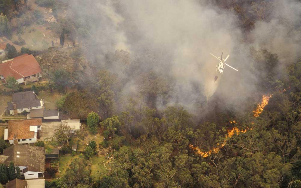 Is your block in a bushfire prone area?
